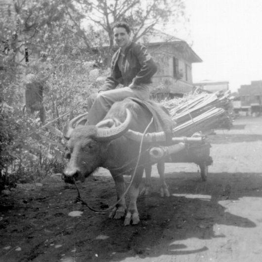 Donn Dears on Buffalo, Mindanao, the Philippines