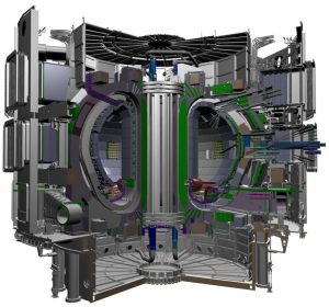 ITER Tokamak from ITER Web Site