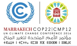 From UNFCCC web site